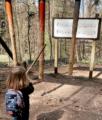 Walderlebnispfad in Bregenz